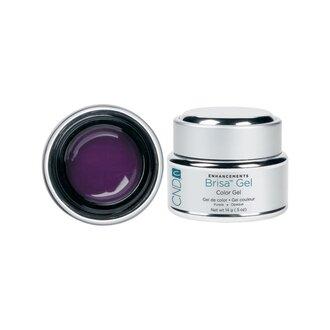 BRISA Purple Opaque Color