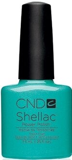 Shellac Hotski to Tchotchke