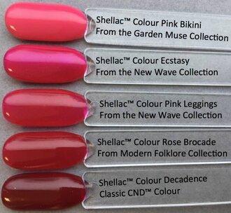 Shellac Pink Leggings